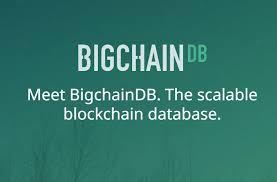 bigchaindb image